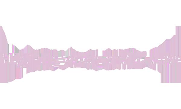 arzucevikalp.net